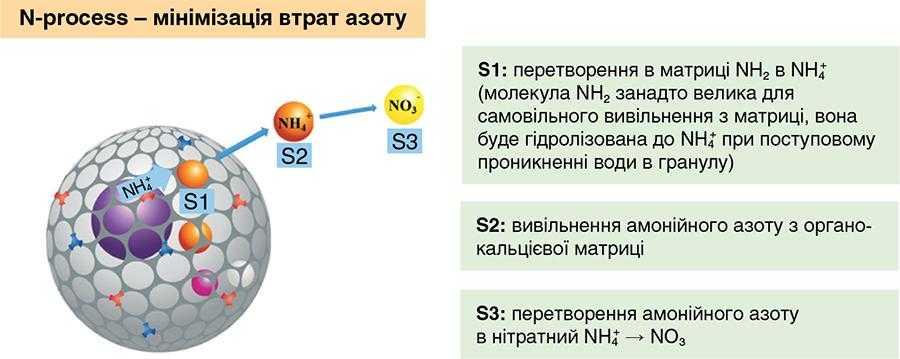 Рис.1. Мінімізація втрат азоту