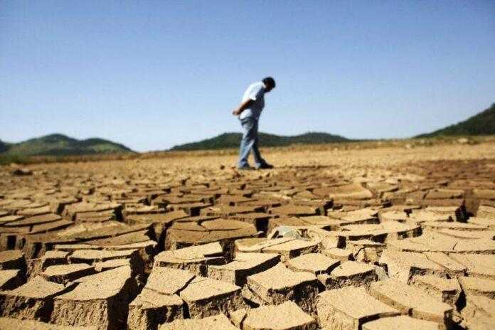 2/3 території України стануть зоною ризикованого землеробства: як господарювати у цих умовах