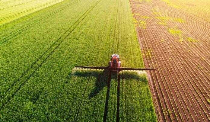Прийняли законодавчу норму, яка дозволить створити нові засоби захисту рослин