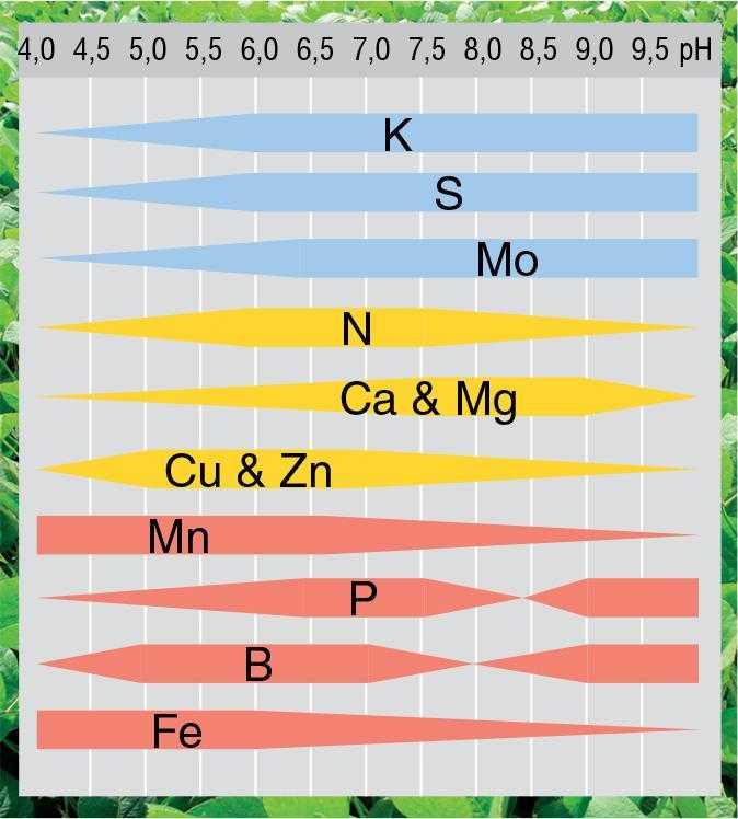 Рис. 4. Вплив pH ґрунту на доступність елементів живлення