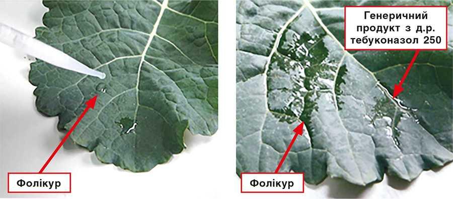Рис.4. Нанесення однакових краплин розчину препаратів Фолікур® та генеричного продукту з д.р. тебуконазол 250 (зліва). Ті ж краплини через 1 хв (справа)