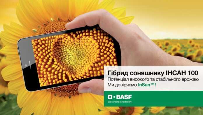 BASF-prezentuye-pershyj-gibryd-sonyashnyka-tradytsijnoyi-systemy-vyroshhuvannya