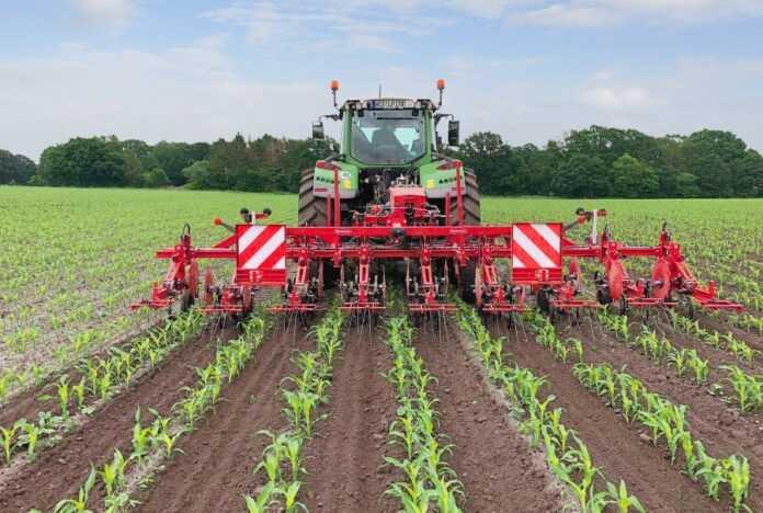 Механічна боротьба з бур'янами на кукурудзі при посіві подвійними рядками