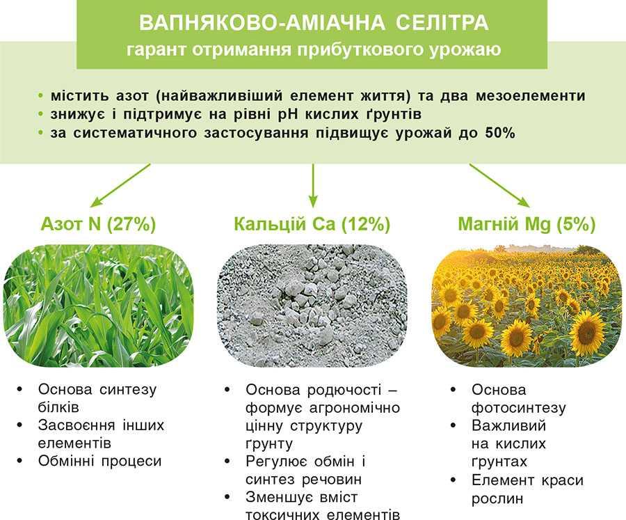 Рис. 2. Позитивний вплив складових вапнякової-аміачної селітри на ґрунт і рослини