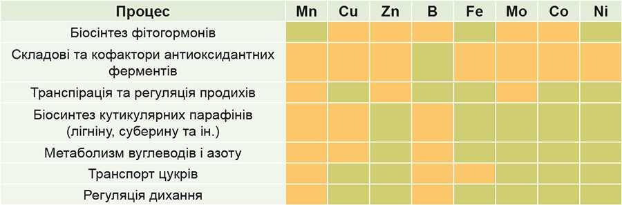 Рис. 2. Участь мікроелементів у формуванні загальної стресостійкості рослин