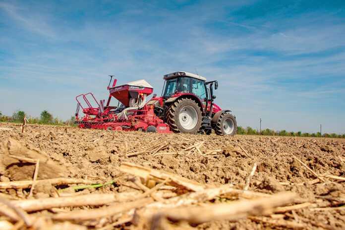 Як за допомогою польового досліду скоротити витрати на насіння пшениці на 50%